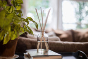 Reed Diffuser + Oils
