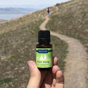Essential Oil Blend - Buzz Along