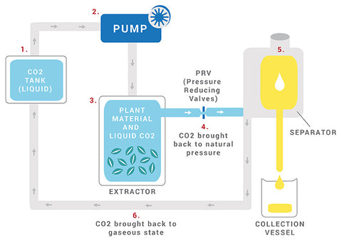 co2 extraction essential oil how are they made