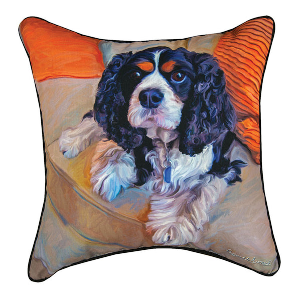 Charles-In-Charge-Pillow-Zoom