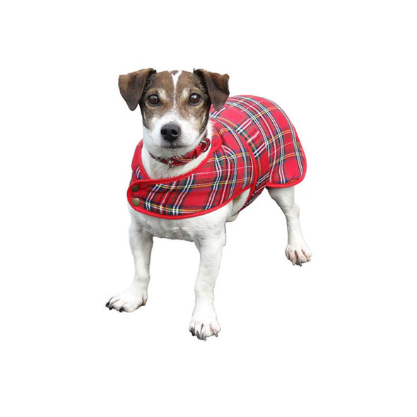 red plaid dog coat, Royal Stewart tartan