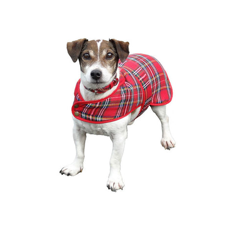 Tartan Dog Coat — Royal Stewart