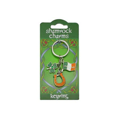 Irish Good Luck Charms Keyring