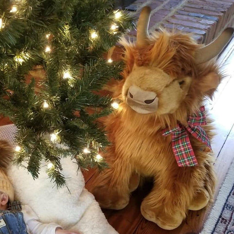 """Donald"" the Highland Cow Plush Toy"