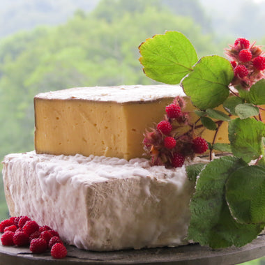 Appalachian cheese