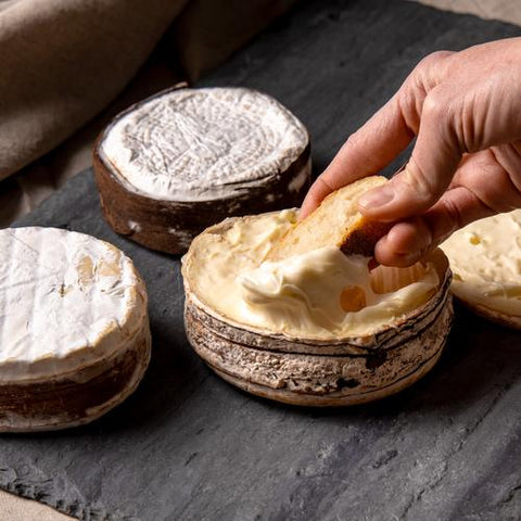 Three Bark wrapped cheese wheels, one opened with hand dipping slice of bread inside