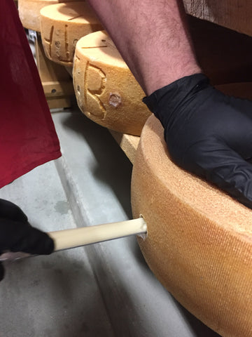 cutting a cheese while wearing black gloves