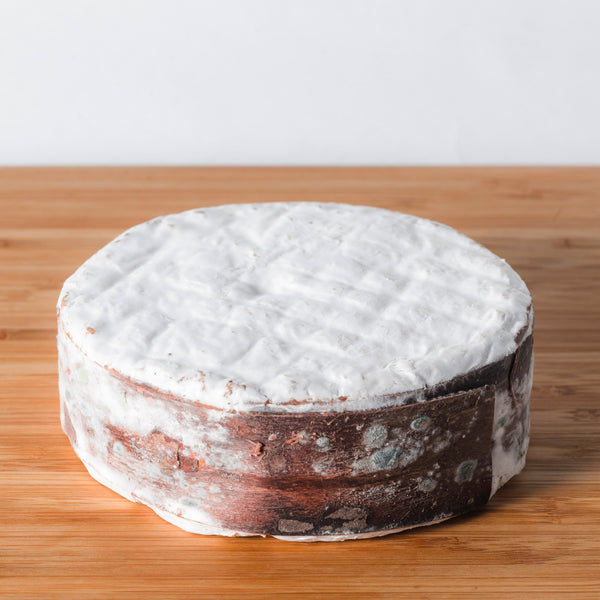 harbison cheese from jasper hill farm, buy cheese online at saxelby cheese