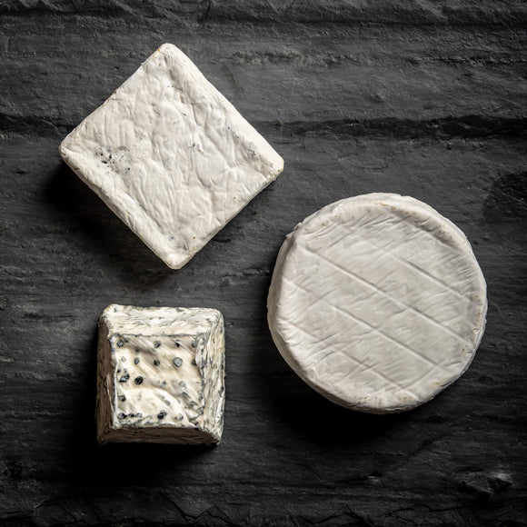 saxelby cheesemongers connoisseur's club spring selection - three different bloomy rind cheeses