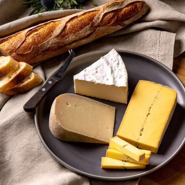 Saxelby's 6 month cheese of the month club - a selection of three American artisan cheeses shipped to your door