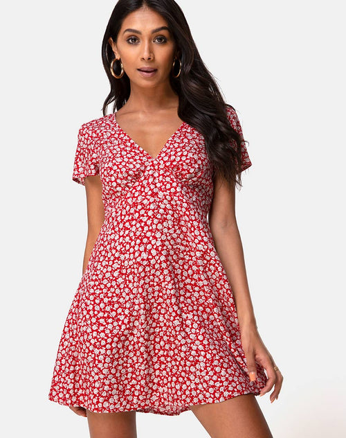 Elara Tea Dress in Ditsy Rose Red Silver