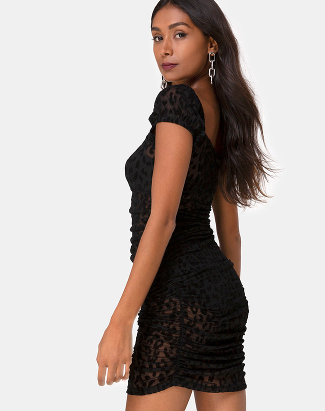 Guenetta Mini Dress in Animal Black Net by Motel