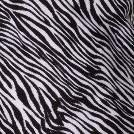 Juvina Slip Dress in Classic Zebra