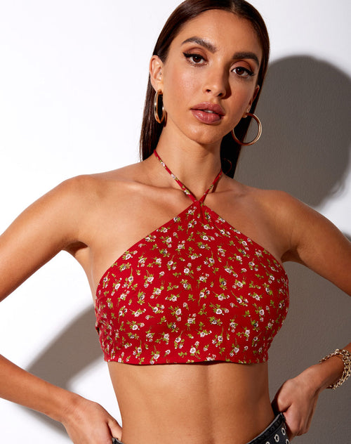 Maudy Crop Top in Falling For You Floral Red