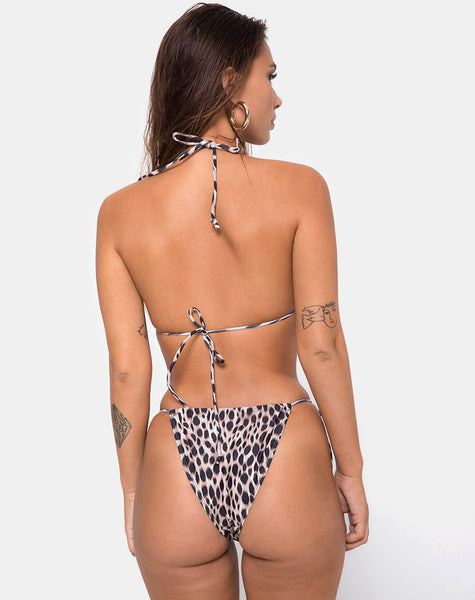 Mone top Bikini in Original Cheetah by Motel