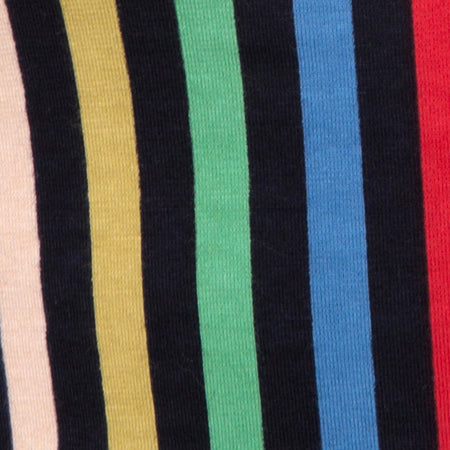 Kimmy Skirt in P.E Stripe