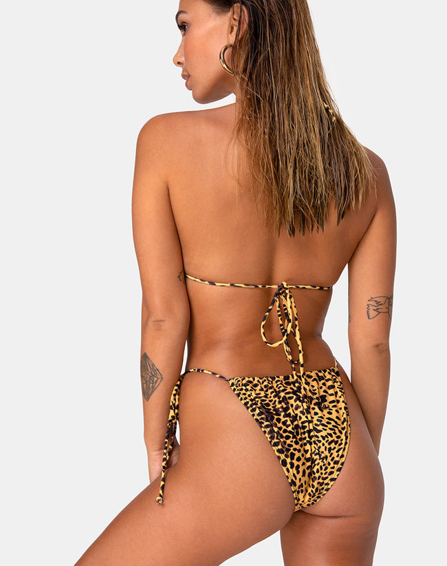 Leyna Bikini Bottom in Golden Cheetah by Motel
