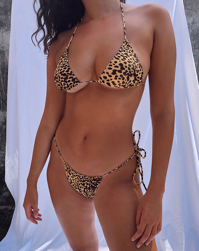 Pami Bikini Top in Golden Cheetah by Motel