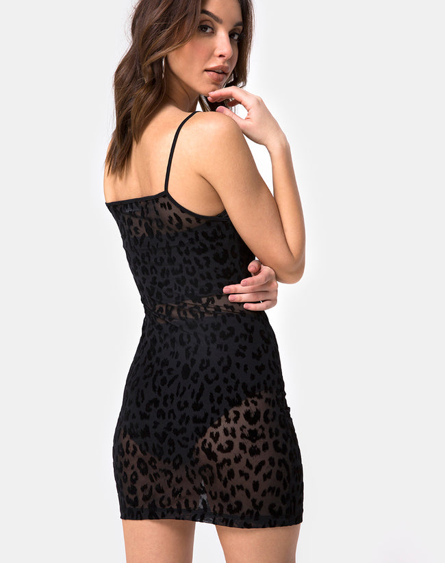 Selah Dress in Animal Black Net By Motel