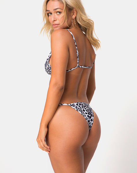 Valter Bikini Bottom in Dalmatian by Motel