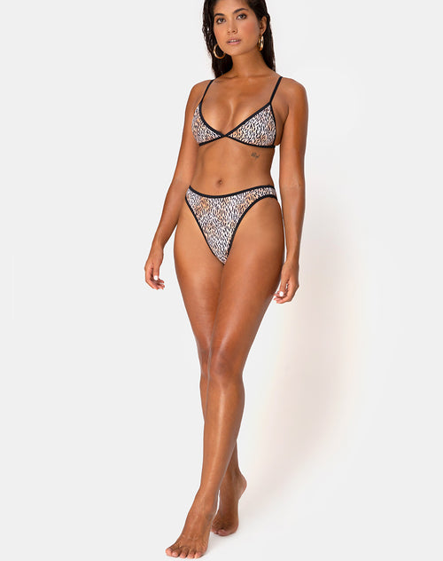 Varna Bikini Bottom in Mini Tiger with Black Binds by Motel