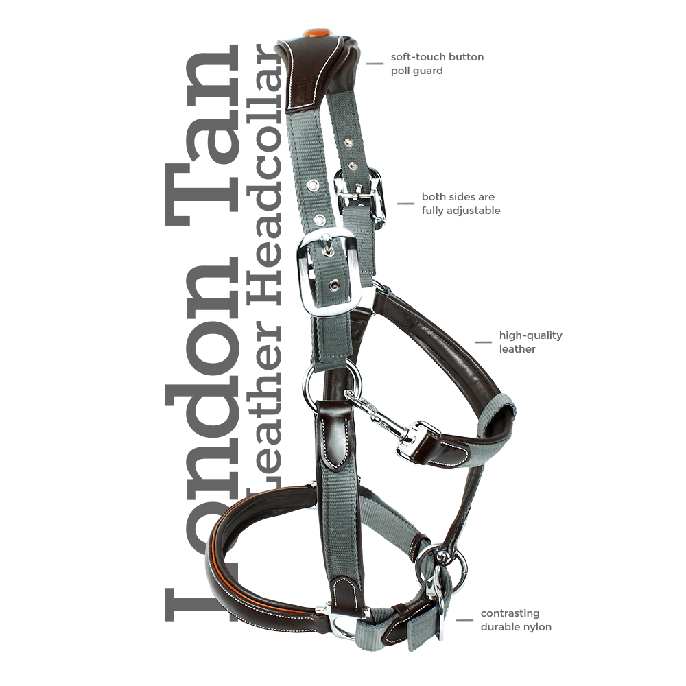 KM Elite London Tan Headcollar Features