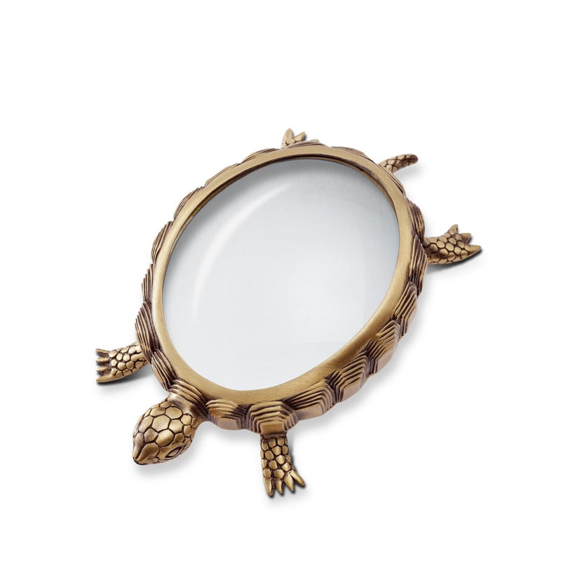 Turtle Magnifying Glass