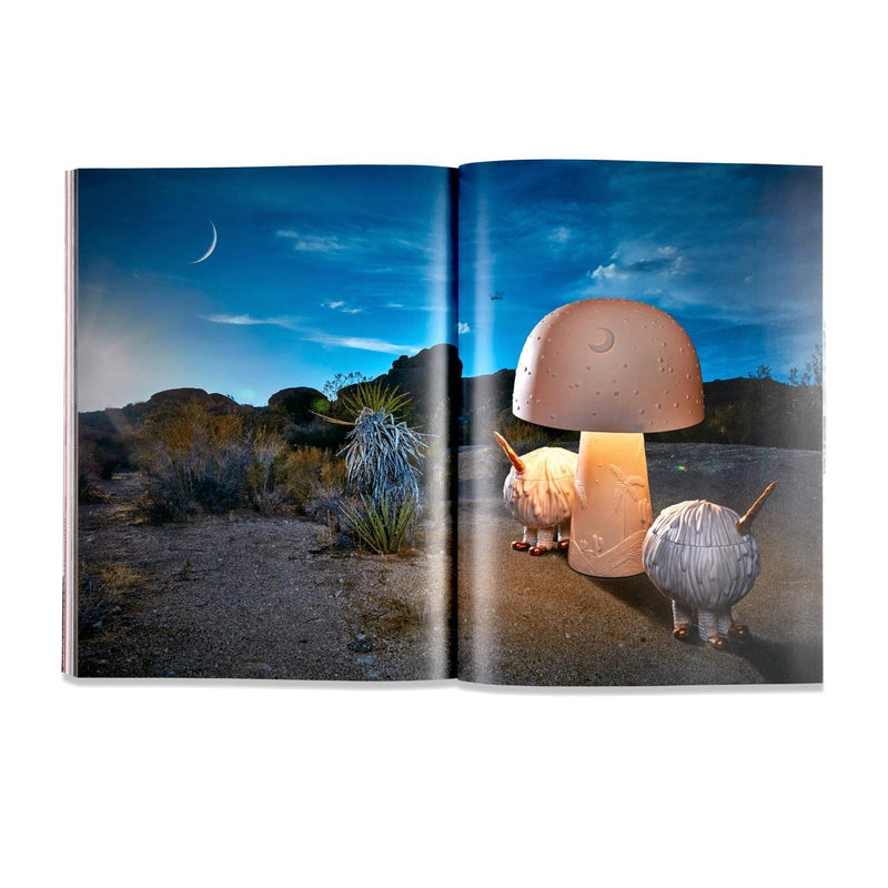 Wild Things: L'Objet Haas Brothers Book