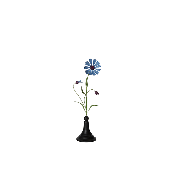 Blue Medium Cornflower