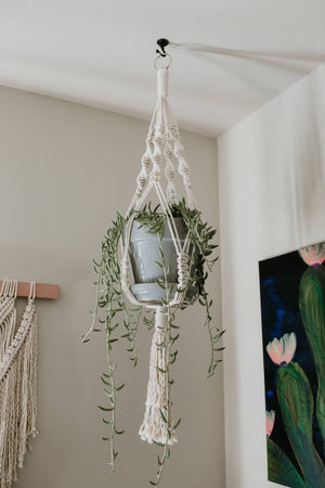 Large Macrame Plant Hanger with Gold Hoop