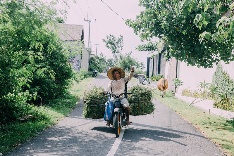 Bali Guide - Where to Stay, Eat and Play in Canggu