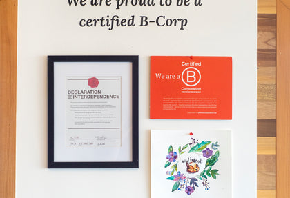 Why and How Wild Friends Became B-Corp Certified