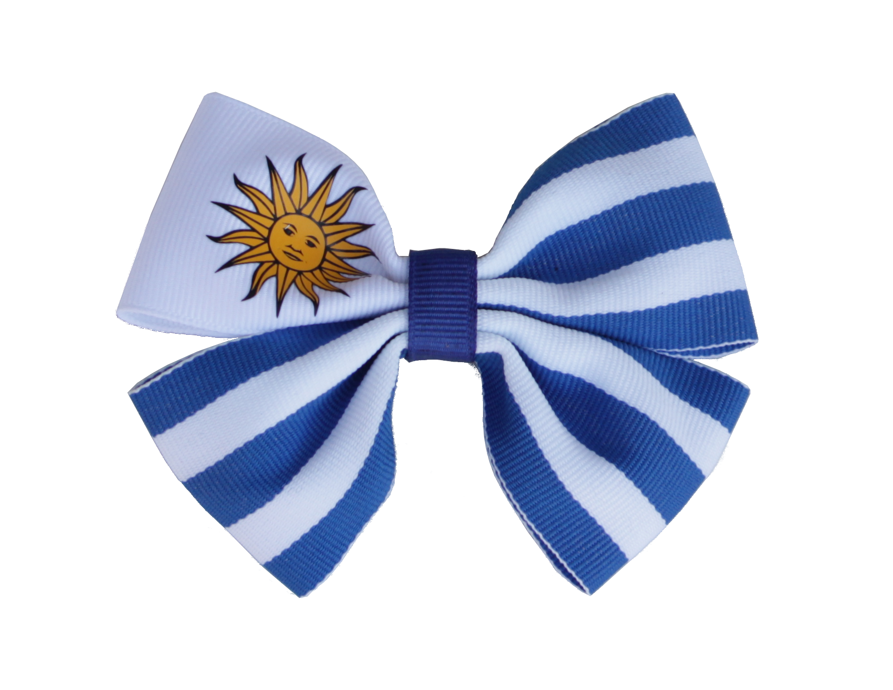 South American Flag Hair Accessories