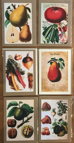 Charming vintage Dutch greeting cards, imported from Holland, Set of 12- CC112