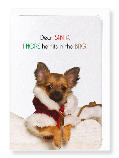 Cute dog British Christmas cards (Set of 8) - CC107