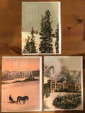 Beautiful imported Danish Christmas cards (set of 12) - CC102