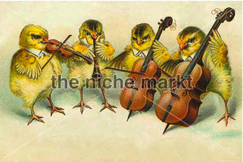 Greeting card with canaries playing instruments