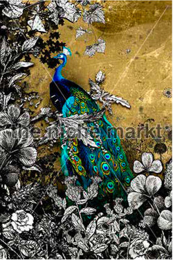 Greeting card with Peacock