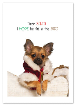 FIT IN SANTA'S BAG CHRISTMAS CARD