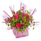 OASIS Midollino Flower Sticks