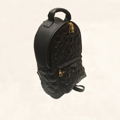 Louis Vuitton | Embroidered Lambskin Palm Springs BackPack | PM - The-Collectory