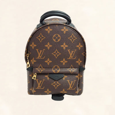 Louis Vuitton Palm Springs Backpack Mini M41562 - The-Collectory