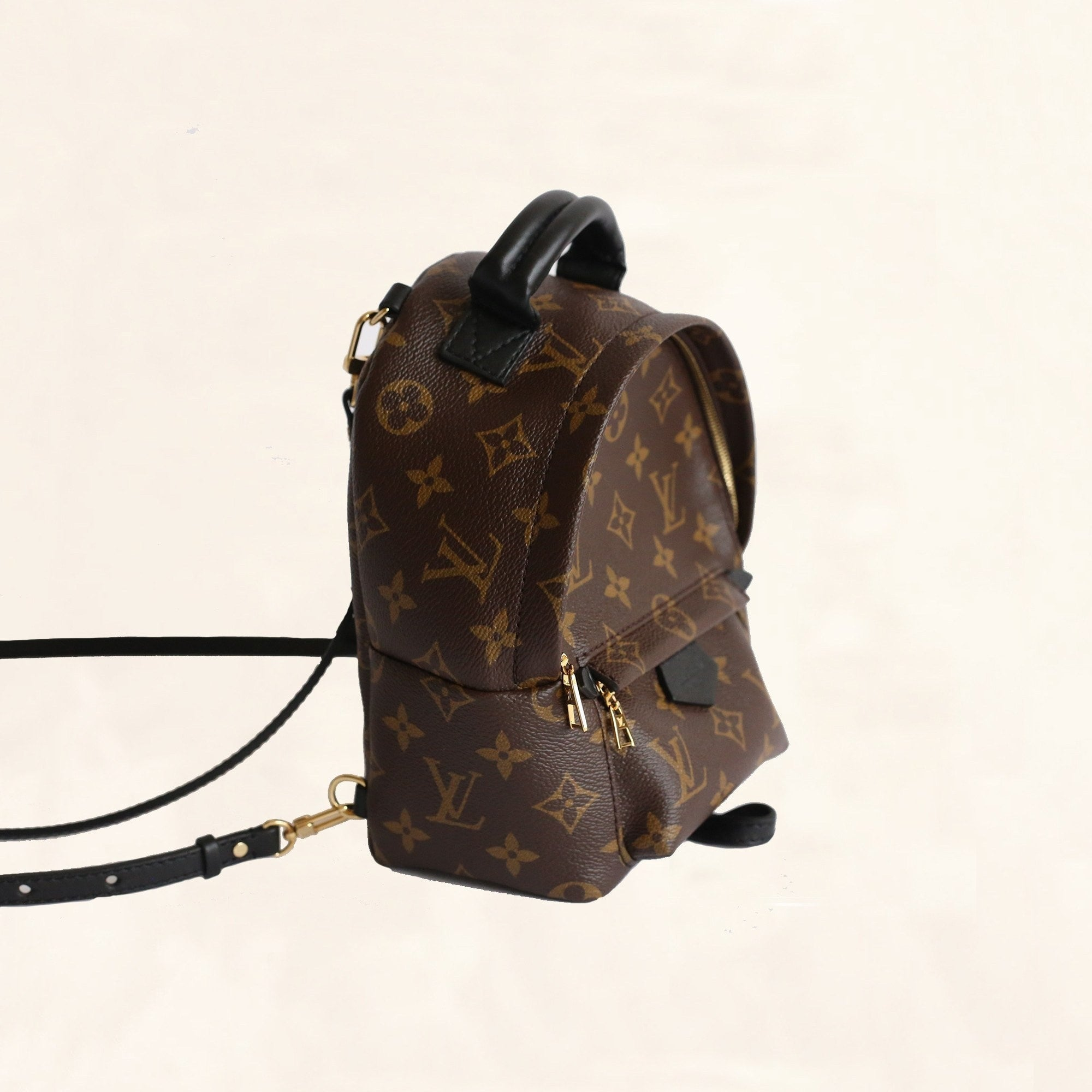 f550ff66b Louis Vuitton Palm Springs Backpack Mini M41562 - The-Collectory