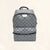 Louis Vuitton |Apollo Backpack Silver Metallic | M43845