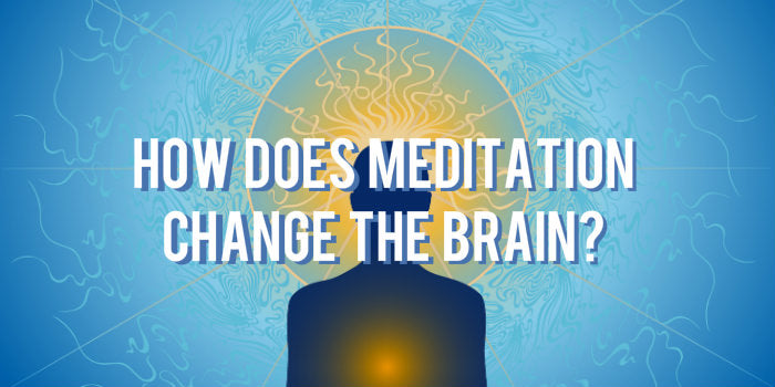 Meditation Grows Your Gray Matter
