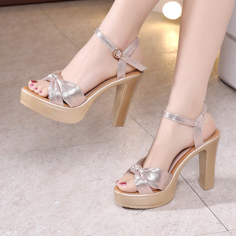Shoes Women Sandals Platform High Heel Fish Mouth Toe Sexy Party Wedding Shoes