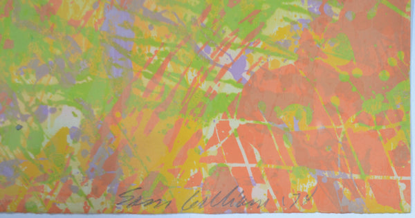 Sam Gilliam - Peach Mint Special