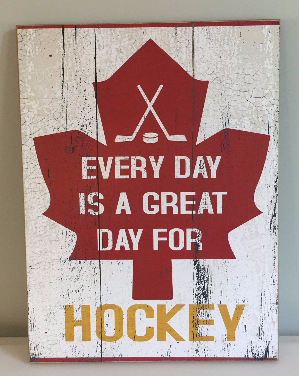 Everyday is a great day for hockey