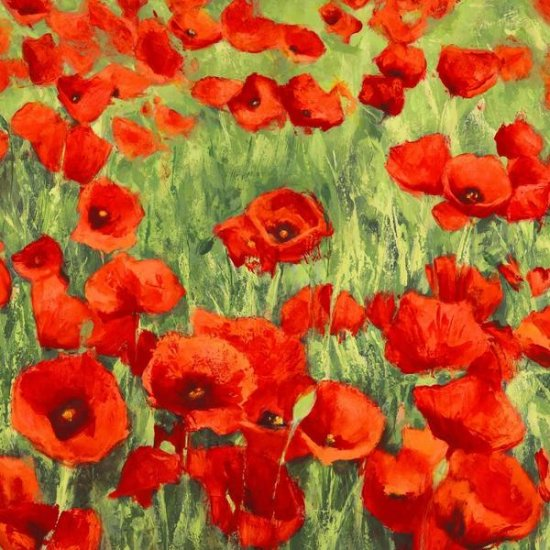 POPPIES By Silvia Mei