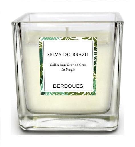 Candle Selva Do Brazil